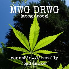 mwg drwg, cannabis, welsh, welsh language, welsh translation, learn welsh, welsh phrases, english to welsh, welsh to english, welsh words