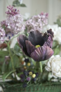 Carolyne Roehm - I was always intrigued with the story of The Black Tulip by Dumas. I plant black tulips every year and I love mixing them with lilacs in particular. Porcelain tulip by Vladimir Kanevsky