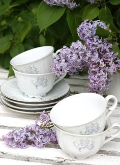 lilacs and china cups