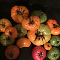Tomatoes split open when the fruit outpaces the growth of the skin — usually after a heavy rain. The bad news: split tomatoes can introduce bacteria into the fruit and cause them to rot. Canning Tomatoes, Bad News, Rain, Pumpkin, Organic, Gardening, Vegetables, Pickled Tomatoes, Rain Fall
