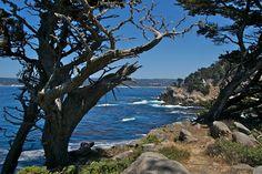 Point Lobos-Monterey Hikes
