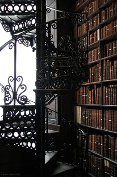 Library at Trinity College. - at Trinity College. Beautiful Library, Dream Library, Library Books, Magical Library, Future Library, College Library, Best Astrology Books, Hogwarts, Old Libraries