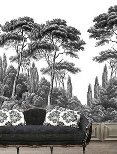 Papier peint panoramique Pins et cyprès Noir et Blanc - Ananbô - Canapé Moissonnier