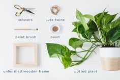 Want a quick, simple craft that doesn't require expensive purchases? Check out this DIY plant hanger--gorgeous! Diy Hanging Planter Macrame, Hanging Planter Boxes, Cedar Planter Box, Yarn Wall Hanging, Diy Planters, Garden Planters, Purple Passion Plant, West Elm Planter, Plant Painting