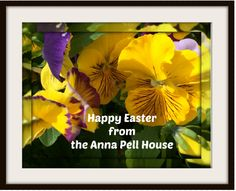 Have a Happy Easter & enjoy the day w/ family & friends! Newport, Friends Family, Happy Easter, Vacation, Day, Happy Easter Day, Vacations, Holidays