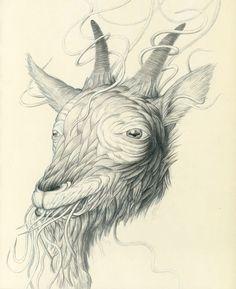 Nick Sheehy - Moleskin Goat