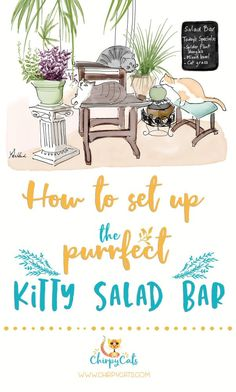 The purrfect kitty salad bar keeps your cats out of your houseplants - Tap the link now to see all of our cool cat collections!