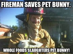 Home destroyed by fire; firefighter saves pet rabbit - WBTV 3 News, Weather, Sports, and Traffic for Charlotte, NC My Heart Is Breaking, Bunny Rabbit, Firefighter, Make Me Smile, Keep It Cleaner, Whole Food Recipes, Riding Helmets, Cats, Charlotte Nc