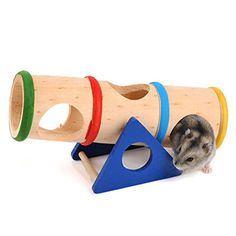 Wood Seesaw Tunnel Toy For Dwarf Hamster Gerbil Rat Mouse... https://www.amazon.com/dp/B01FRZYMUQ/ref=cm_sw_r_pi_dp_x_WGt0yb0FXSW0Y