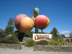 Big fruit outside Cromwell, Central Otago...Home town!