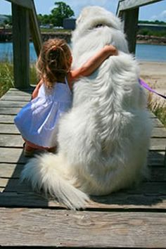So very sweet, a child and a dog friend! Love this photo! pin by Kellie Pritchard on HEARTWARMING