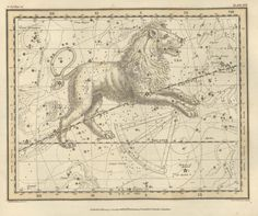LEO zodiac map print