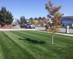 Make sure your lawn gets the help it needs to be rejuvenated again after winter. Learn how lawn care experts in Sandy, UT can help on http://www.holmesutah.com/lawn-care-sandy-ut