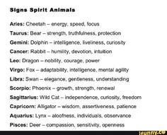 How the are ya? Le Zodiac, Zodiac Funny, Zodiac Posts, Zodiac Memes, Zodiac Quotes, Zodiac Signs Sagittarius, Zodiac Star Signs, Astrology Zodiac, Astrology Signs