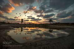 Sunset at the birds pool by Isamtelhami