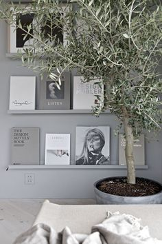 OUR NEW GREY BOOK WALL & A BIG OLIVE TREE Although I really liked how our book wall used to look like in black, I actually prefer this lighter look that we got after I replaced it with the perfect gre Interior Inspiration, Room Inspiration, Olivier En Pot, Interior Styling, Interior Design, Book Wall, Ideas Hogar, Scandinavian Interior, Decoration