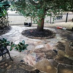Resanded, and Sealed Pressure Washing Services, Winter Temperature, Hot And Humid, Extreme Weather, Garden Hose, Natural Stones, Restoration, Usa, U.s. States