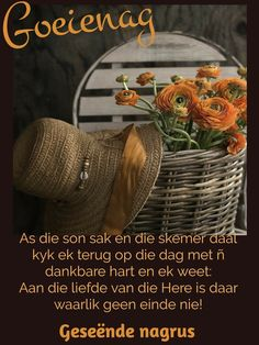 Goeie Nag, Special Quotes, Sleep Tight, Thoughts, Words, Afrikaans, Night, Morning Coffee, Sweet Dreams