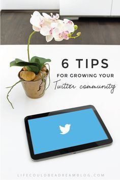 Tips for growing a large and loyal Twitter community.