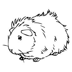 Christmas Guniea Pig Coloring Pages