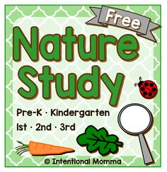 Free printable Nature Study (pre-K through 3rd grade)  Download a free printable Nature Study from The Intentional Momma.