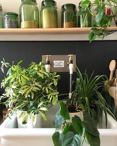 vintagekitchen - New Deko Sites Kitchen Plants, Kitchen Decor, Green Plants, Decoration, Vintage Kitchen, Cool Kitchens, Home Goods, Sweet Home, Design