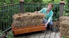 http://bonnieplants.com When it comes to thrifty, versatile ways to garden, it's hard to beat a straw bale. It costs less than a bag of potting soil, you can...