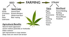 Hemp: Farming, Growing, Weed Control, Pest Control, Fertility, Harvesting Fiber, Retting,