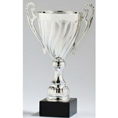 Silver Trophy Cup With 3 Lines Of Custom T