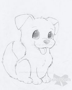 Puppy Sketch By Kitty Ham