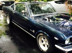 1966 Mustang Fastback: 1 of 7,889 - http://barnfinds.com/1966-mustang-fastback-1-of-7889/
