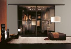 luxurious walk in closet with glass doors