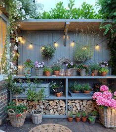 Small Courtyard Gardens, Terrace Garden, Garden Spaces, Back Gardens, Small Gardens, Outdoor Gardens, Dream Garden, Home And Garden, Vertical Garden Design