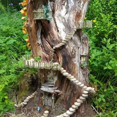 Steps up tree - Modern Fairy Tree Houses, Fairy Village, Fairy Garden Houses, Fairy Crafts, Garden Crafts, Garden Projects, Garden Ideas, Fairy Doors, Miniature Fairy Gardens