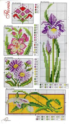 Love the iris.  Great thing about cross stitch - even when the instructions are in Russian, they can still be followed by the numbers.  DMC threads are apparently the same in every language.  Love it!