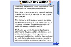 help your students understand how noun groups can enrich