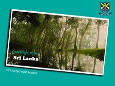 Country: Sri Lanka Capitals: Sri Jayawardenepura Kotte, Colombo President: Maithripala Sirisena Prime minister: Ranil Wickremesinghe Official languages: Sinhala, Tamil