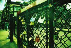 Love locks (by Alex)