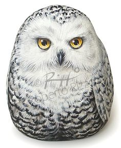 painted rock snowy owl / The rock art I have been seeing on a couple of boards is Amazing!! Wow.