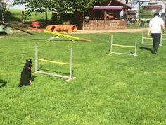 Hürden kann man auch selber machen, beispielsweise mit zwei Eimern und einem Besenstiel, Backsteinen, breiten Blumenkästen...