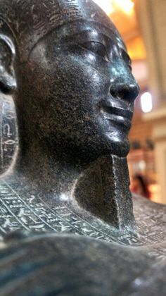 What is the best website describe the pieces in egyptian museum ?