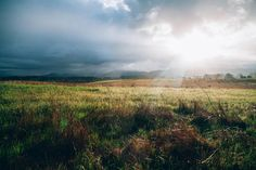 Plain Land Landscape - new photo at Avopix.com    ✔ https://avopix.com/photo/12154-plain-land-landscape    #plain #land #landscape #field #grass #avopix #free #photos #public #domain