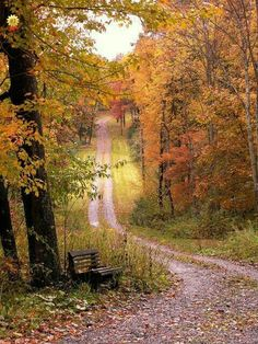 take me home Beautiful World, Beautiful Places, Beautiful Pictures, Country Life, Country Roads, Autumn Scenery, All Nature, Belle Photo, Pathways