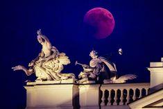 Blood Moon - Longest Lunar Eclipse of Century Moon Photos, Lunar Eclipse, Blood Moon, 21st Century, Liberty, Statue, Amazing, Board, Blog