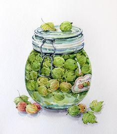 RARE Gooseberry Jam by Vavilina Russian modern postcard Fruit Illustration, Food Illustrations, Watercolor Food, Watercolor Paintings, Gooseberry Jam, Food Sketch, Food Drawing, Vintage Diy, Kitchen Art