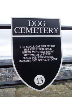 DOG CEMENTERY: cimitero per i cani mascottes dei reggimenti scozzesi.