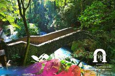 Ven y disfruta del puente en #Michoacán! Descripción gráfica, quédate con nosotros! #SéBienvenidoAquí
