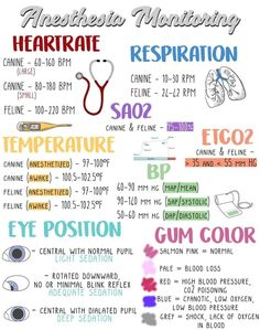 Veterinary Anesthesia Monitoring I made this anesthesia monitoring guide for my clinic to hang & train newer technicians Veterinary Anesthesia Monitoring Veterinarian Assistant, Veterinarian Technician, Veterinarian School, Vet Assistant School, Veterinarian Education, Veterinarian Quotes, Vet Tech Student, Nursing School Notes, Medical School