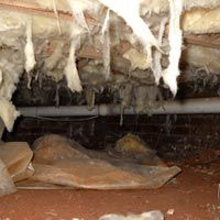Wet insulation in your crawl space can have serious impacts on your home. What can JES do to help homeowners with wet crawl space insulation? Crawl Space Insulation, Crawl Space Repair, Home Repairs, Getting Wet, Home Improvement, Diy, House, Bricolage, Home