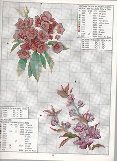 STATE FLOWERS (bbj0081) Connecticut, Pennsylvania & Delaware 1/1